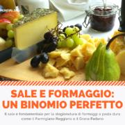 Sale e formaggio: un binomio perfetto