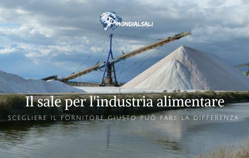Puro e di alta qualità: ecco il sale per l'industria alimentare targato Mondial Sali